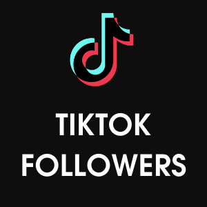 buy tiktok followers india