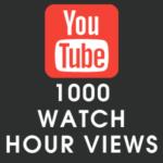 Youtube 1000 Watch Hour Views