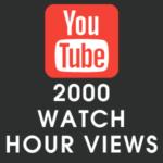Youtube 2000 Watch Hour Views