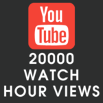 Youtube 20000 Watch Hour Views
