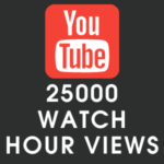 Youtube 25000 Watch Hour Views