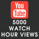 Youtube 5000 Watch Hour Views
